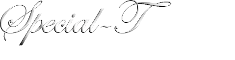 Special-T Gift and Jewels. Where unique and sophisticated gifts meet.